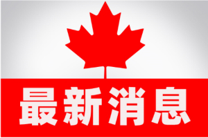 突发!美国可能向加拿大边境派遣军队以防控疫情