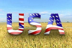 """按下""""暂停键""""后,美国经济何时重开?佩洛西:""""目前不清楚,我们可能会陷入萧条"""""""