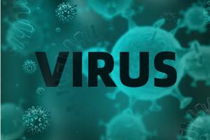 疫情最新消息!美国累计确诊突破56万、死亡人数超2万 全球累计确诊超185万