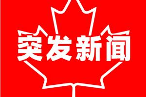 突发!加拿大皇家骑警今早在总督府区域逮捕一名武装分子 特鲁多一家不在家