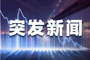 香港警方逮捕林卓廷和许智峰!共计16名涉屯门公园事件及元朗袭击事件人员被拘