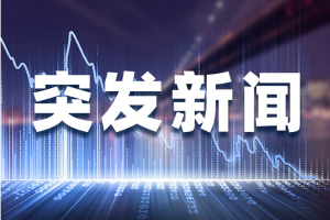 澳籍华裔央视女主持成蕾被捕