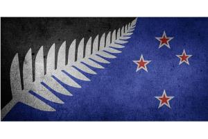 新西兰联储维持利率0.25%不变 决议不及预期鸽派 纽美短线拉升逾40点
