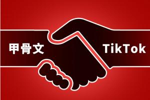 最新消息!努钦称如甲骨文的交易不符合美国的安全要求 TikTok将被关闭