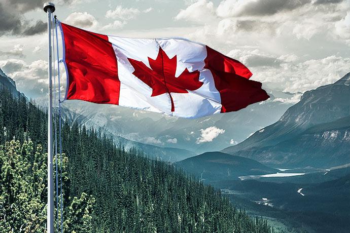 加拿大将中俄列为主要网络犯罪威胁 电力供应隐藏巨大风险