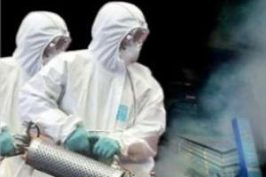 """致死率高达50%!世卫向非洲六国发出埃博拉疫情预警 白宫警告:需迅速采取行动以避免""""灾难性后果"""""""