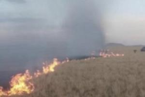 突发!蒙古国草原大火烧到中国境内 因风力较大、扑灭作业难度增加